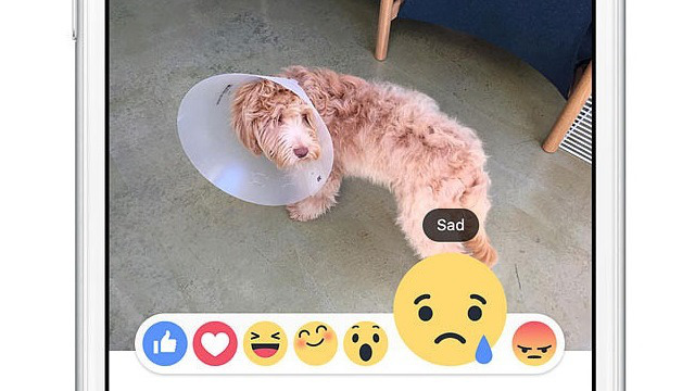 Facebook Reactions used on phone